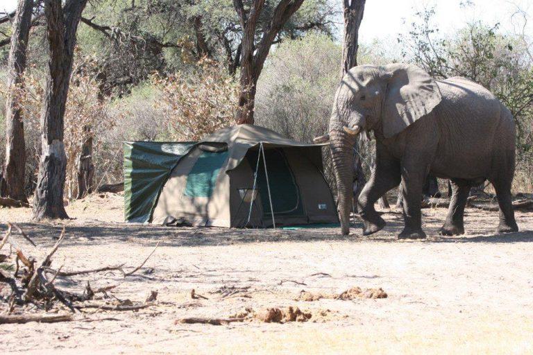En-Suite Fully Serviced safari