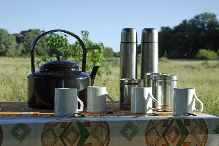 Tea Camp 10